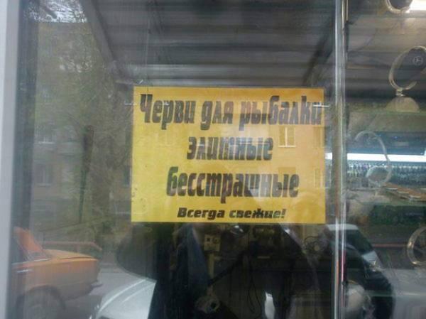 http://s2.uploads.ru/t/QmthU.jpg