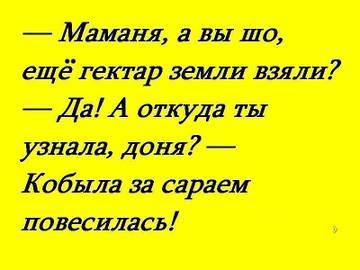 http://s2.uploads.ru/t/SUpoF.jpg