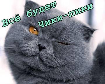 http://s2.uploads.ru/t/SW6FK.jpg