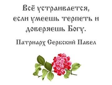 http://s2.uploads.ru/t/SWuqp.jpg