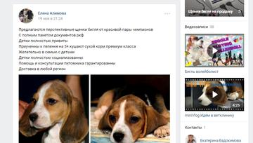 http://s2.uploads.ru/t/SaEJ2.png