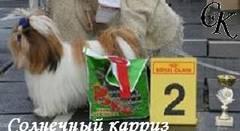 http://s2.uploads.ru/t/Sap9V.jpg