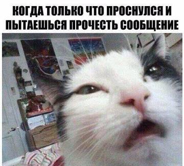 http://s2.uploads.ru/t/Sem1L.jpg