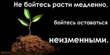http://s2.uploads.ru/t/SxG6D.jpg