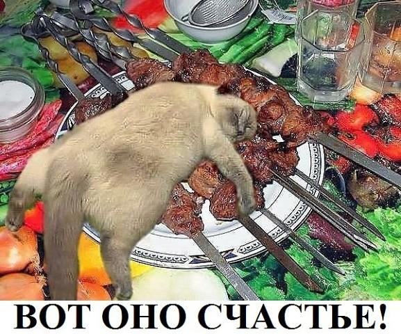 http://s2.uploads.ru/t/TCm28.jpg