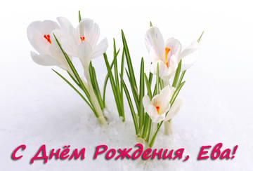 http://s2.uploads.ru/t/TUKgZ.jpg