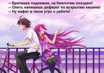 http://s2.uploads.ru/t/TiNBr.jpg