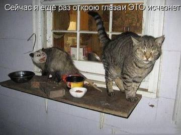 http://s2.uploads.ru/t/TivVP.jpg