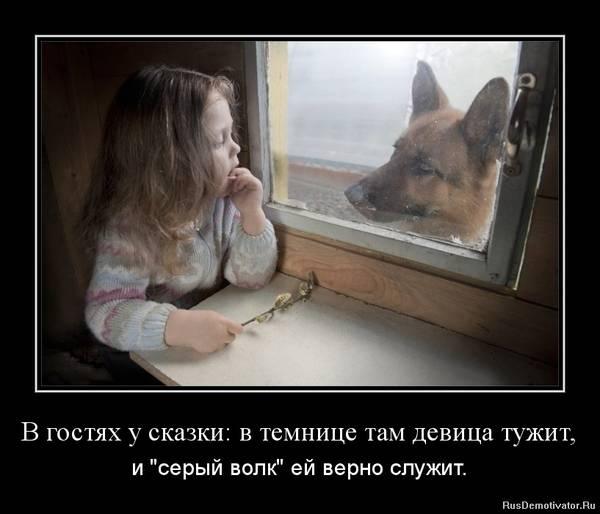 http://s2.uploads.ru/t/U35Bt.jpg