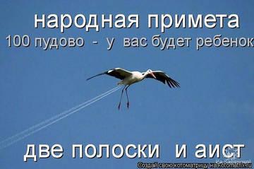 http://s2.uploads.ru/t/U6cns.jpg