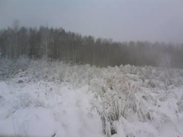 http://s2.uploads.ru/t/UJEQC.jpg