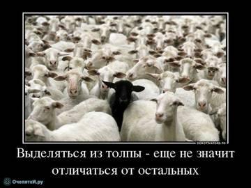 http://s2.uploads.ru/t/VB5EH.jpg