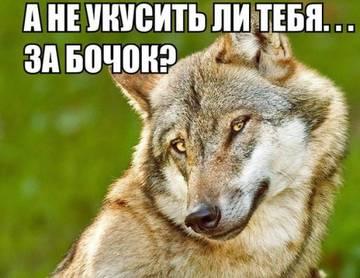 http://s2.uploads.ru/t/VDdvK.jpg