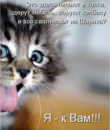 http://s2.uploads.ru/t/VeiTu.jpg