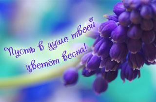 http://s2.uploads.ru/t/VqXmJ.jpg