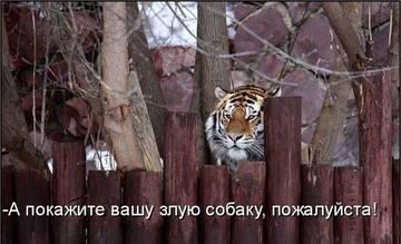 http://s2.uploads.ru/t/W21lX.jpg