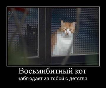 http://s2.uploads.ru/t/W3Axj.jpg