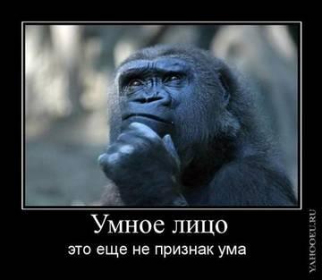 http://s2.uploads.ru/t/WflL8.jpg