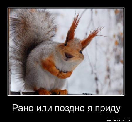 http://s2.uploads.ru/t/Wob9O.jpg