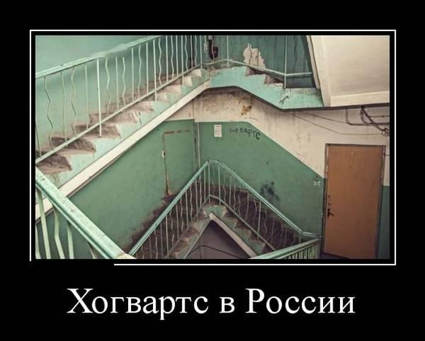 http://s2.uploads.ru/t/X1m3F.jpg