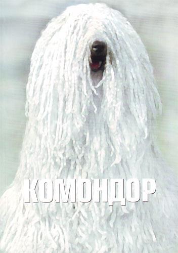 http://s2.uploads.ru/t/XDMwB.jpg