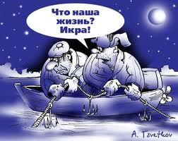 http://s2.uploads.ru/t/XFPKR.jpg