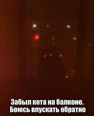 http://s2.uploads.ru/t/Xfk5a.jpg