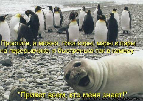 http://s2.uploads.ru/t/XiBJP.jpg