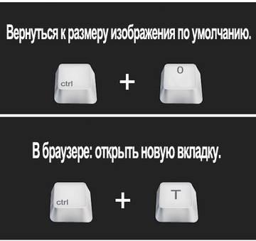 http://s2.uploads.ru/t/Xjc25.jpg