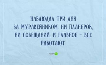 http://s2.uploads.ru/t/YCDO2.jpg
