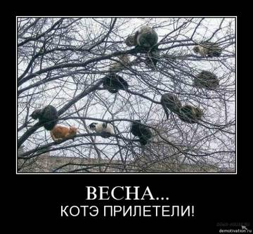 http://s2.uploads.ru/t/Ycsbx.jpg