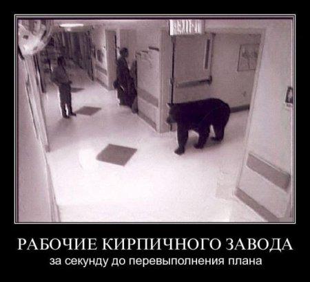 http://s2.uploads.ru/t/Yus2m.jpg