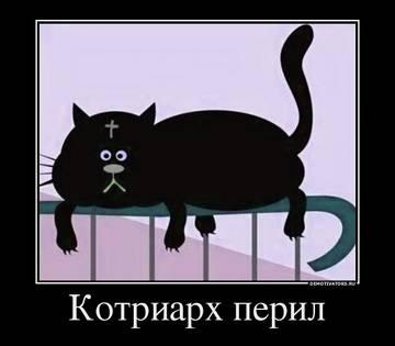 http://s2.uploads.ru/t/Z7RDI.jpg