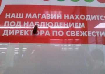 http://s2.uploads.ru/t/ZJFYj.jpg