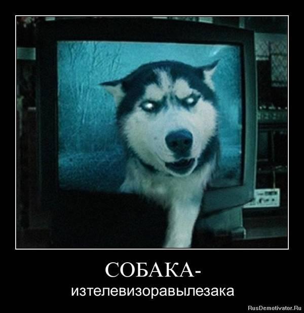 http://s2.uploads.ru/t/Ze7RC.jpg