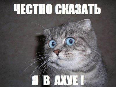 http://s2.uploads.ru/t/a2Pr7.jpg