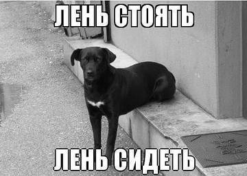 http://s2.uploads.ru/t/aRiKn.jpg