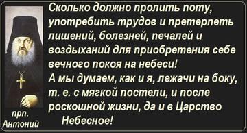 http://s2.uploads.ru/t/aSuck.jpg
