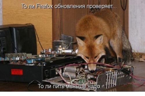 http://s2.uploads.ru/t/aZcWM.jpg