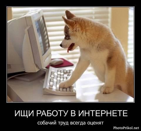 http://s2.uploads.ru/t/ajiKT.jpg