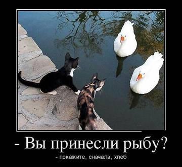 http://s2.uploads.ru/t/au8rC.jpg