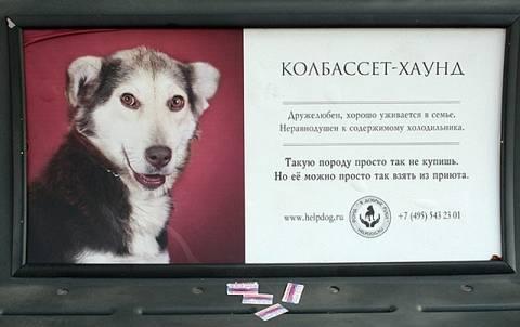 http://s2.uploads.ru/t/azoIr.jpg