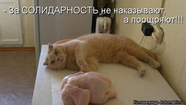 http://s2.uploads.ru/t/b0ZtQ.jpg