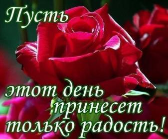 http://s2.uploads.ru/t/b1lML.jpg