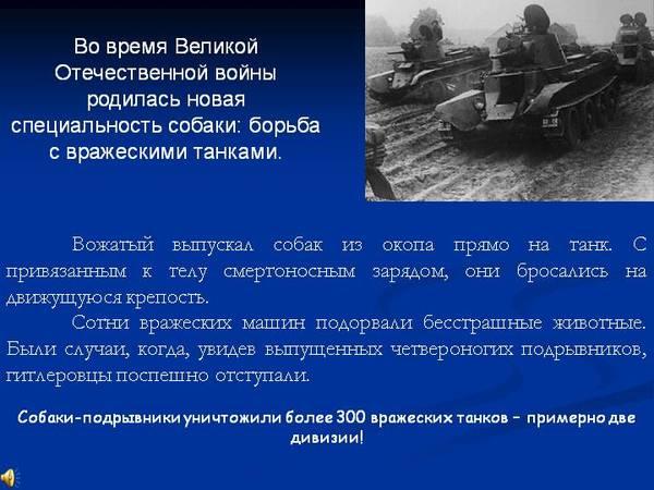 http://s2.uploads.ru/t/bH4QR.jpg