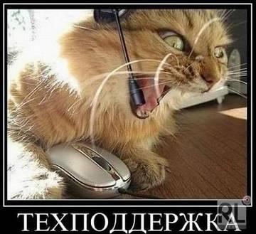 http://s2.uploads.ru/t/bNPQF.jpg