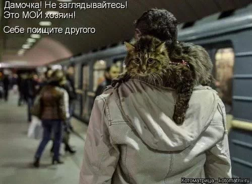 http://s2.uploads.ru/t/bp39q.jpg
