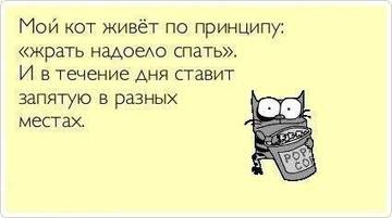 http://s2.uploads.ru/t/bu3JB.jpg