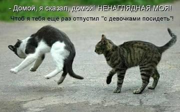 http://s2.uploads.ru/t/byTnB.jpg