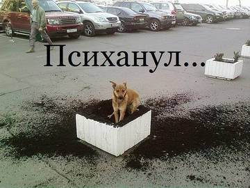 http://s2.uploads.ru/t/cGugo.jpg
